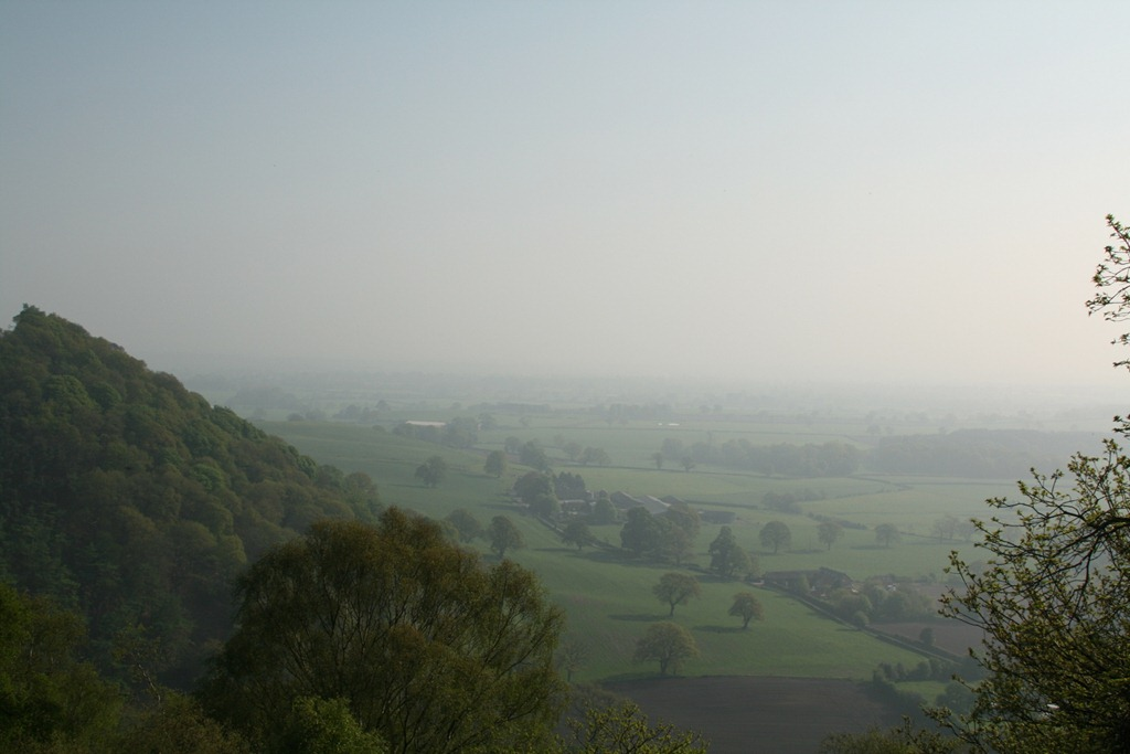 View from Bulkeley Hill Wood