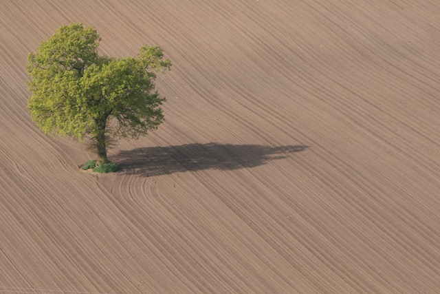 04 - April - Ploughed field