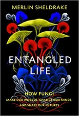 entangled_life